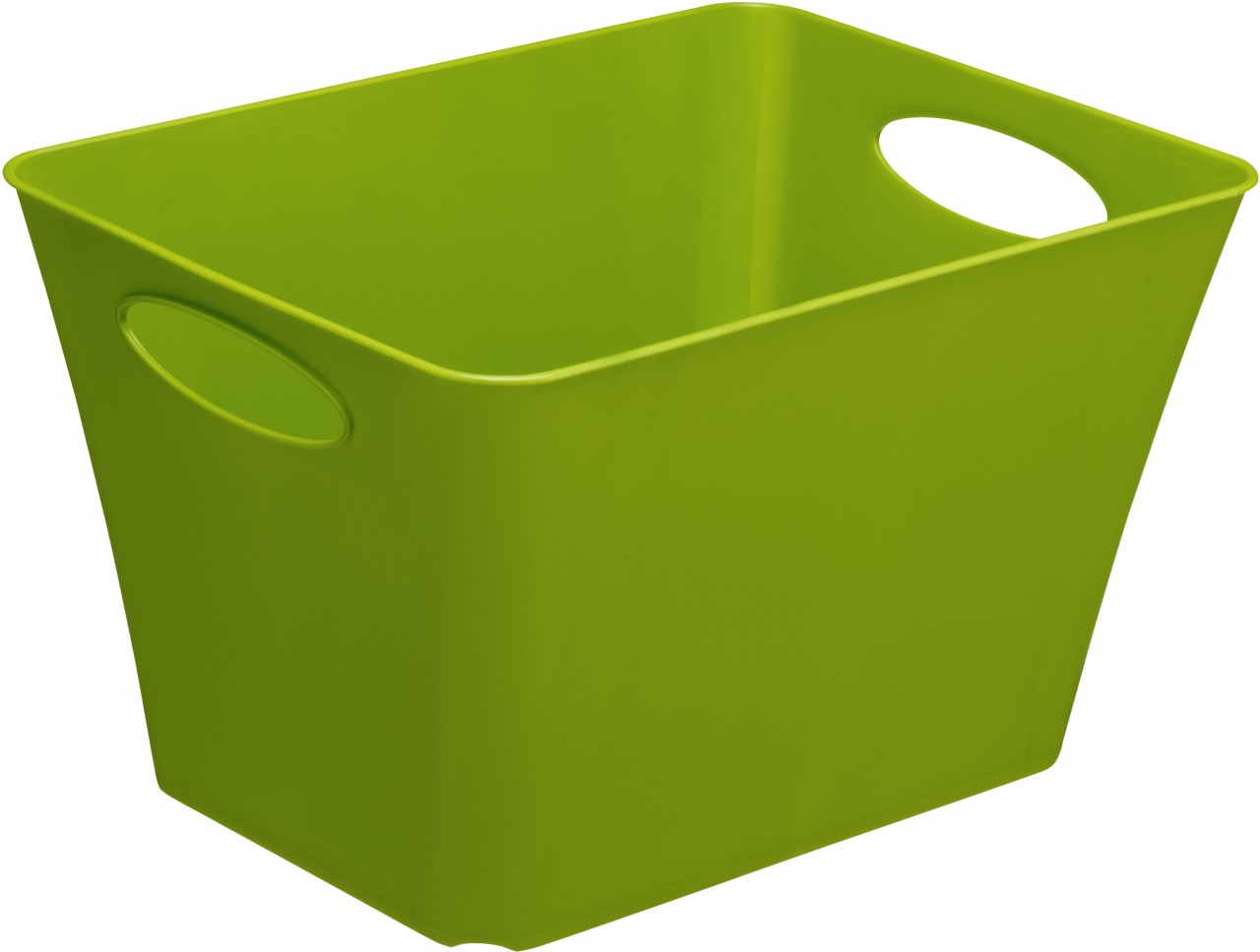 Rotho Living Box, 24 l ´´grün´´