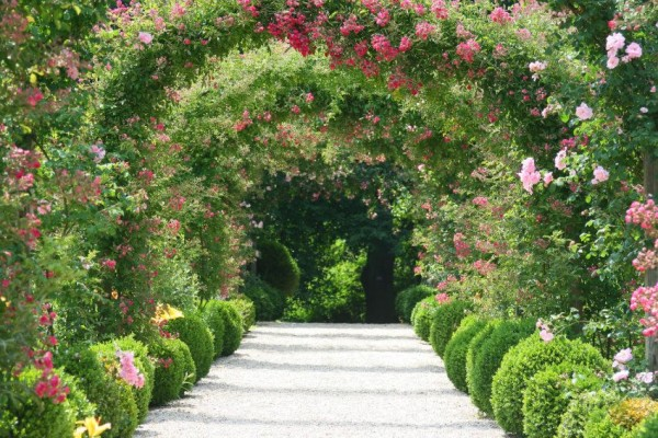 papermoon-vlies-fototapete-digitaldruck-rose-arch-garden-350-x-260-cm
